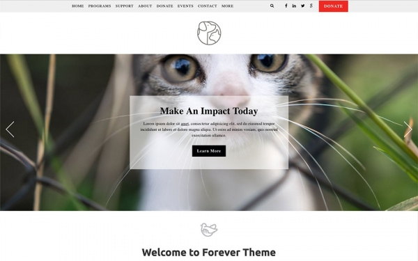 <p>Forever humane society website theme.</p>