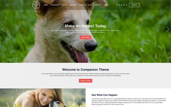 <p>Companion humane society website theme.</p>