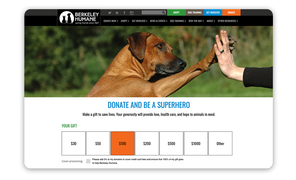 Adding an engaging banner image is a great Giving Tuesday idea for improving your donation page.