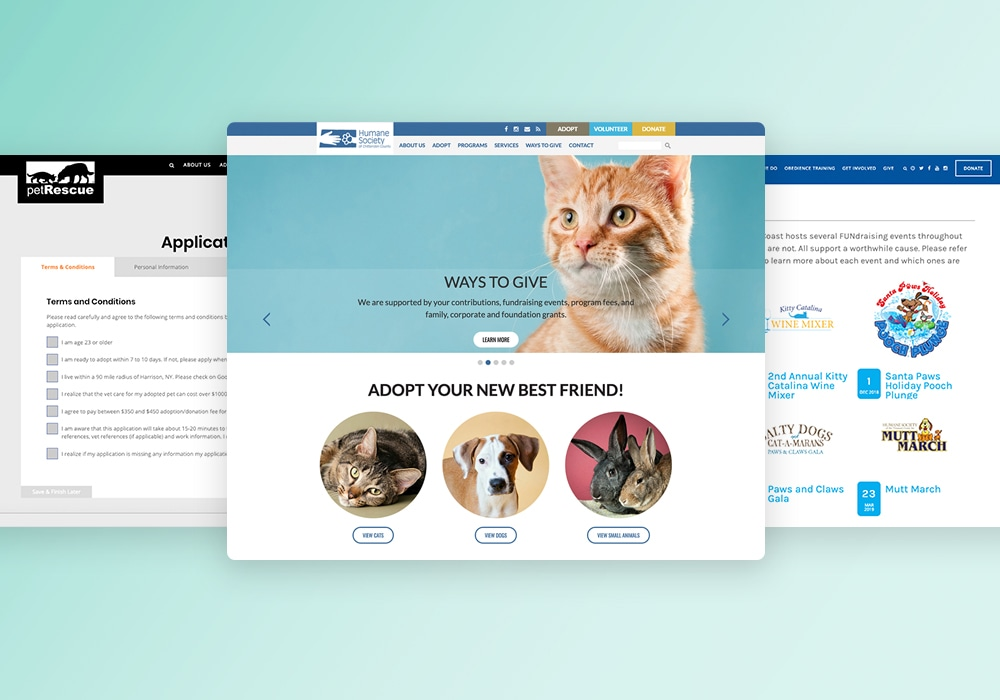 Best humane society website design examples