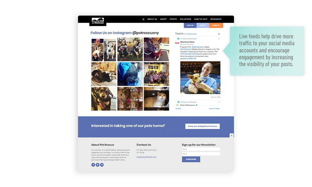 Humane society website social media feed