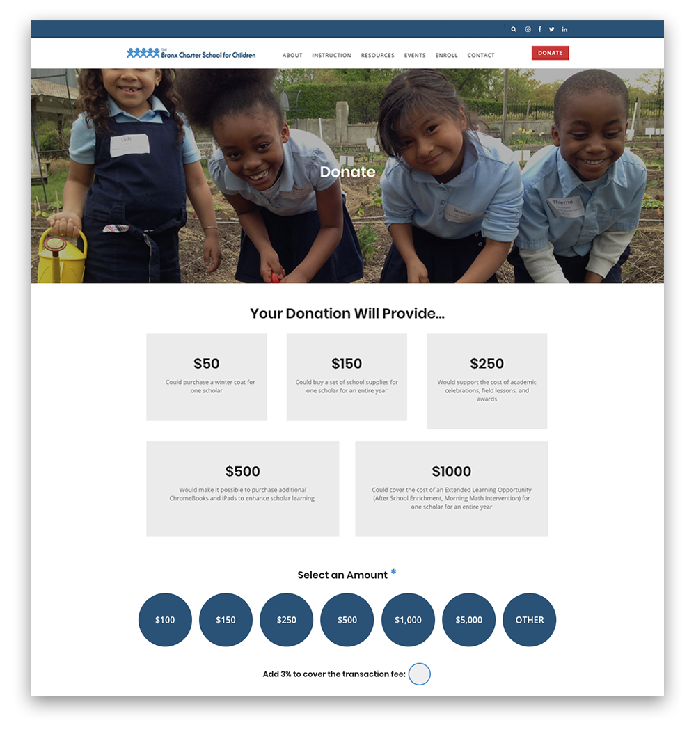 donation-page-design-tips-example.png