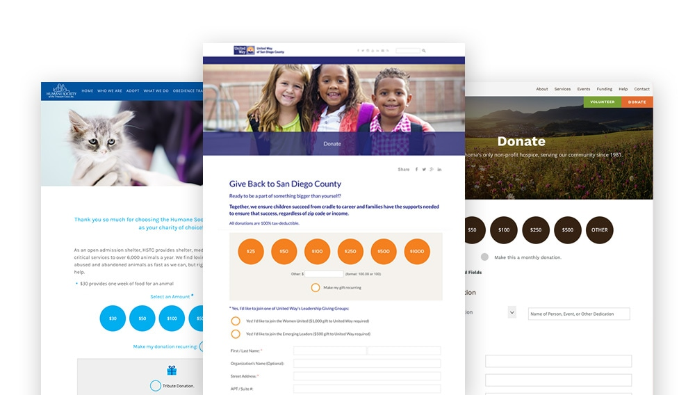 Organizations using Morweb have created effective donation page designs through their CMS platform.