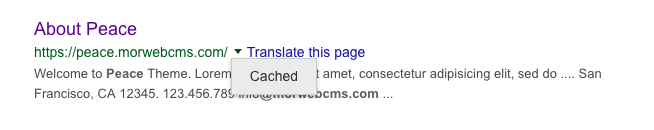 Example of cached website in Google search