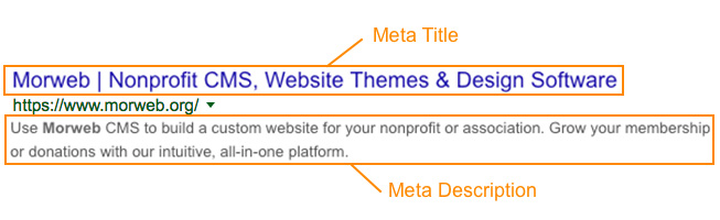 SEO for nonprofits meta tag example