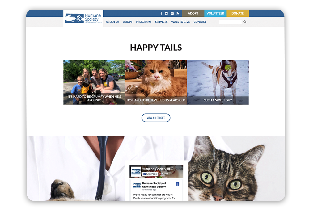 Nonprofit web design tip: Building emotional connections through storytelling nonprofit website example