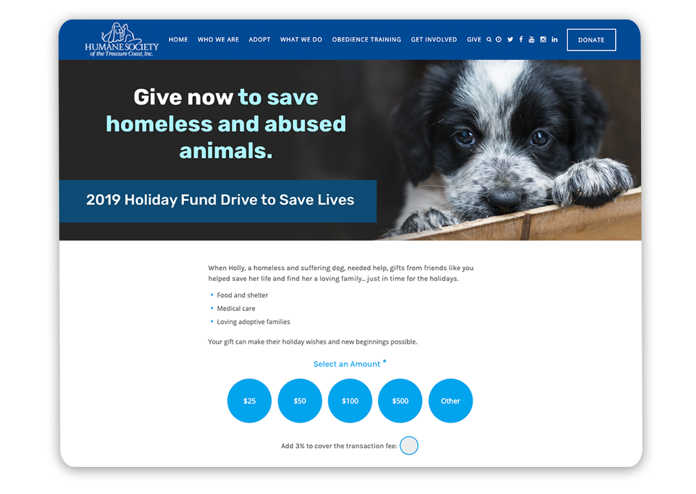 Example of a year-end giving landing page for the Humane Society of the Treasure Coast